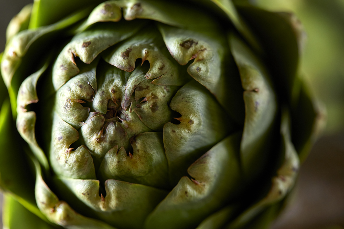 Artichoke-Close-Color-apf