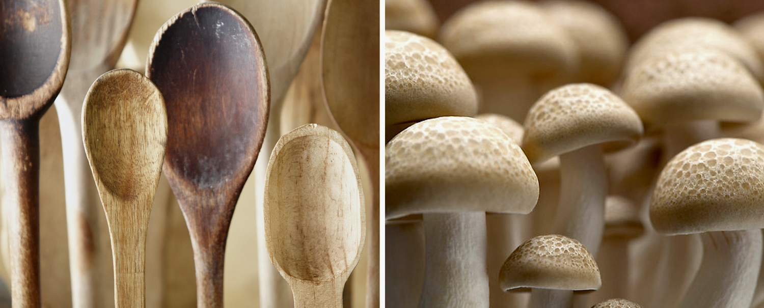 Spoons_Shrooms_old